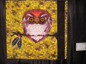 A Flammulated Owl