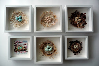 nests framed-Chursinoff