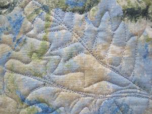 free motion quilting back 2