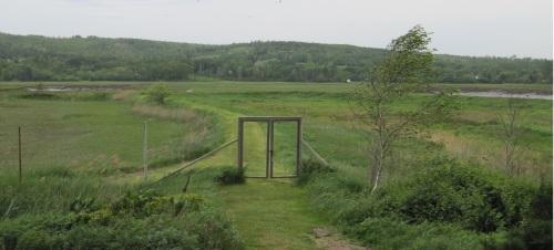 Series marsh cropped