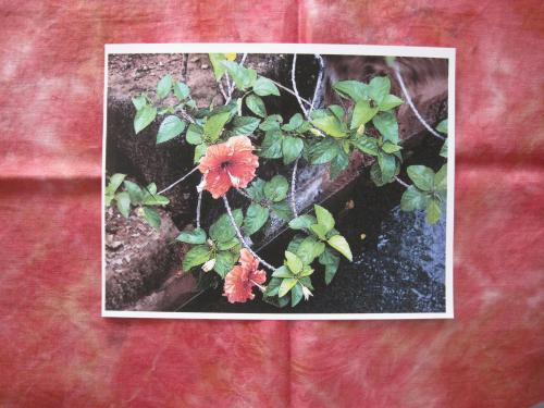 photo on fabric