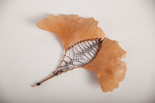 Hillary Fayle This Is Colossal leaf-4