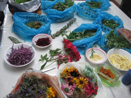 Eco dyeing buffet