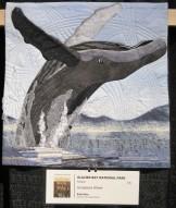 glacier-bay-humpback-whale-ricki-selva